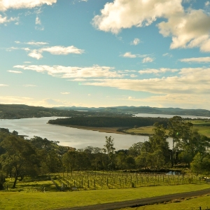 TAMAR VALLEY WINE ROUTE
